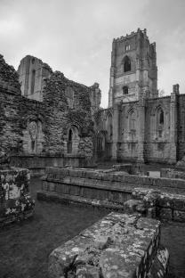 fountains abbey 15.4.06 011-01bw